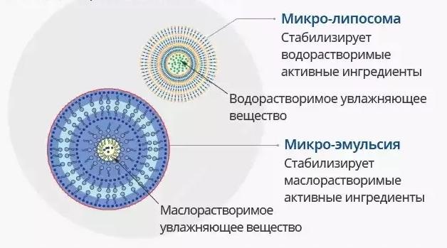 atomy-tehnologija-mikrokapsul