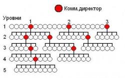 Реальная сетевая структура в развитии